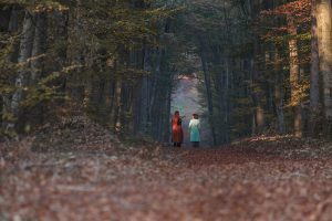 walk & talk in the Viennes forest